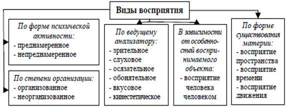 Восприятие. Основные виды, свойства и особенности восприятия