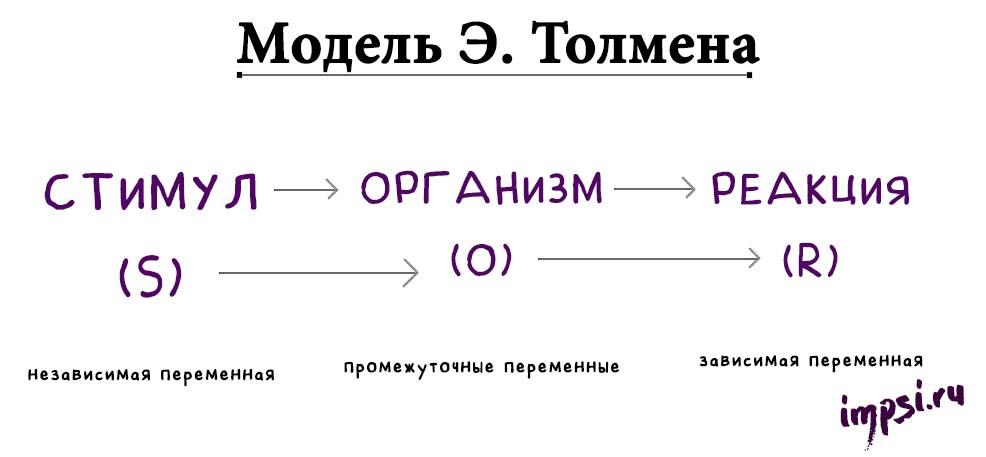 Бихевиоризм: Дж. Уотсон, Э. Торндайк, Б. Скиннер,Э. Толмен